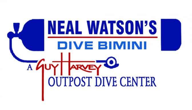 Neal Watson's