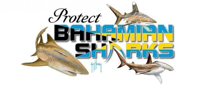 Bahamian Sharks