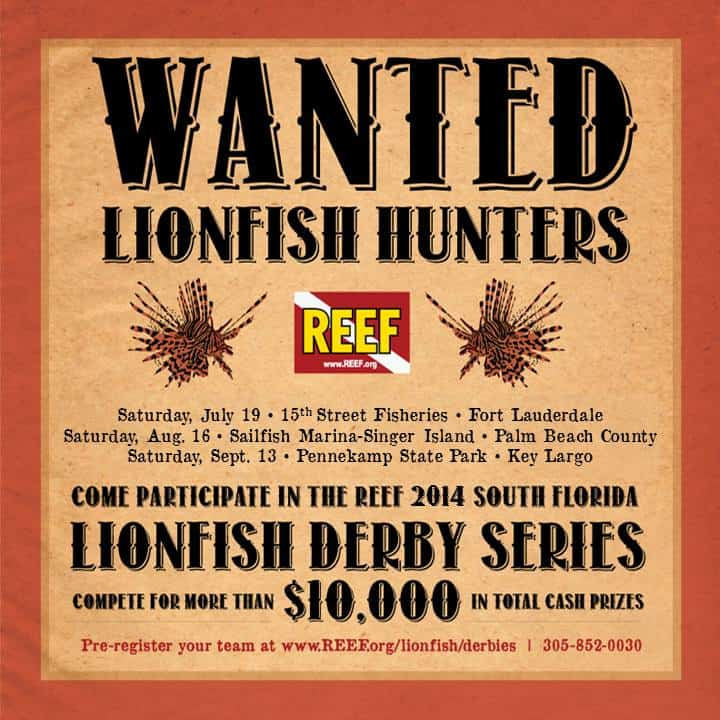 Reef Derbies 2014