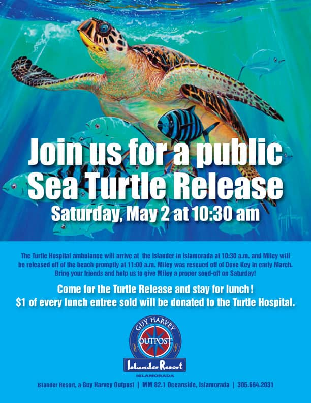 GHO-Turtle-Release