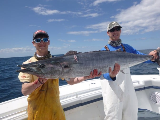 Giant wahoo off st augustine