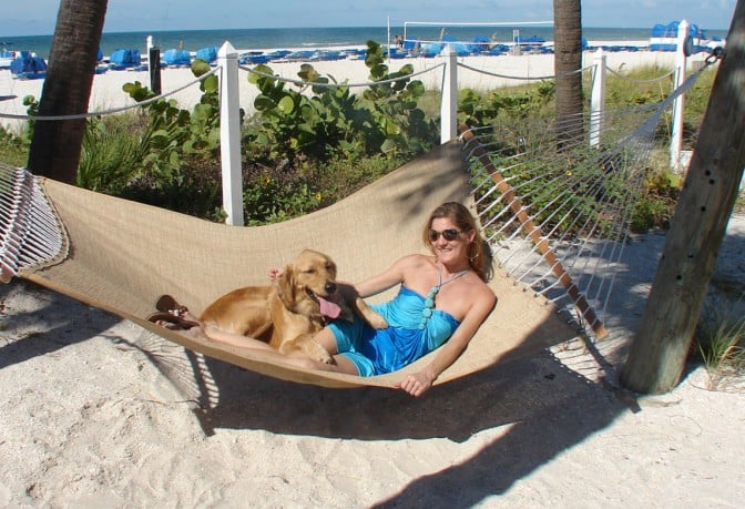St Pete Dog Hammock