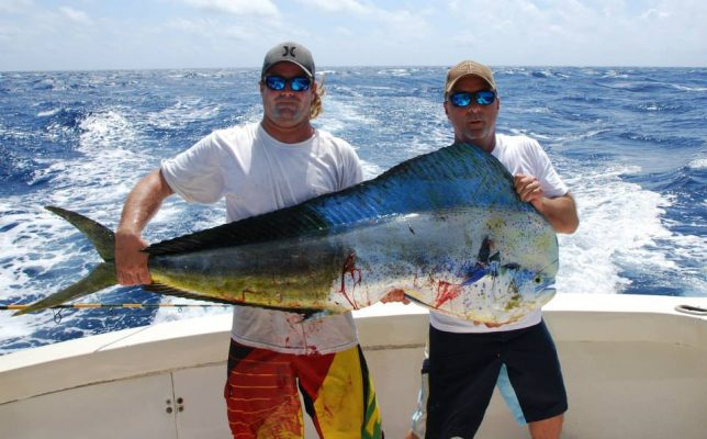 Guy Harvey Out Post Blog