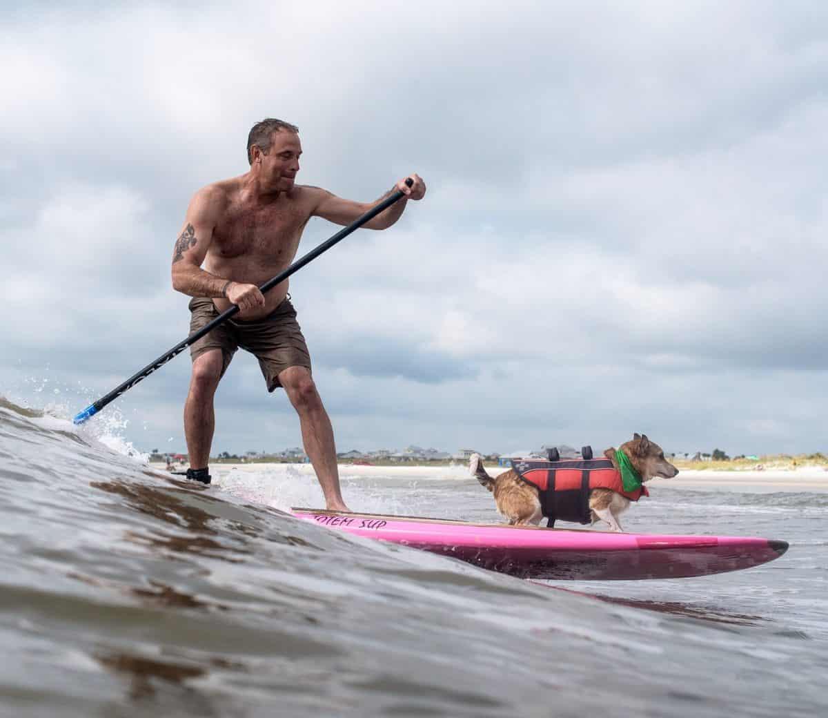Goofy Foot Sur-furs Hit ST Augustine Beach