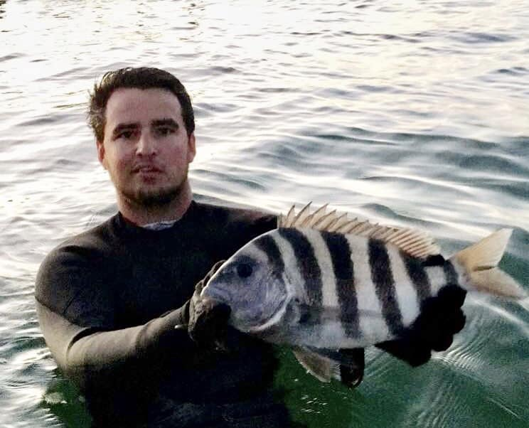 Captain Hardy Sheepshead